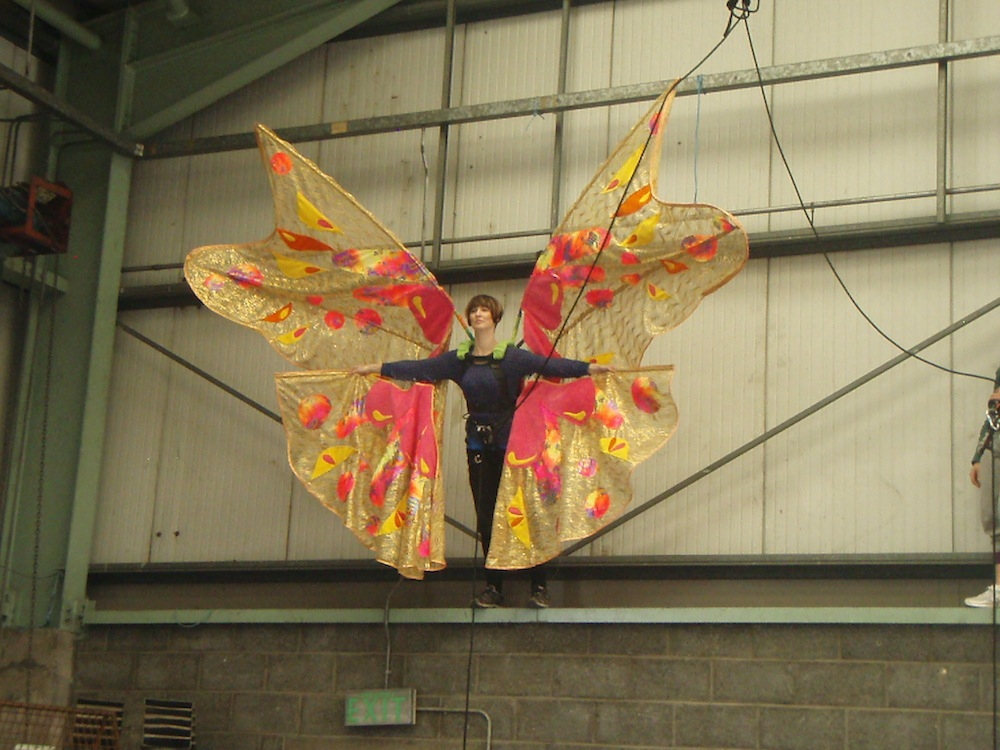 Fly Butterfly (2009)
